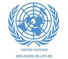 birlesmis milletler logosu